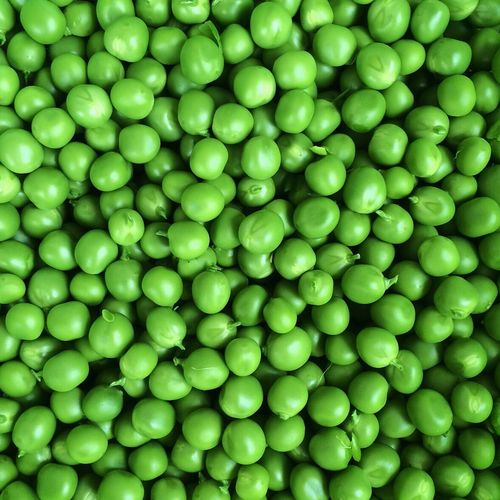 Abundance Apple Backgrounds Close-up Detail Food Freshness Full Frame Green Green Color Healthy Eating Large Group Of Objects No People Organic Pattern Peas Repetition Ripe Still Life Color Palette