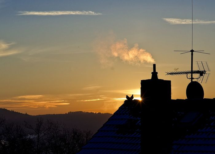 Chimney Doves Bird Cold Temperature Dawn Light Antenna - Aerial Roof Building Sky