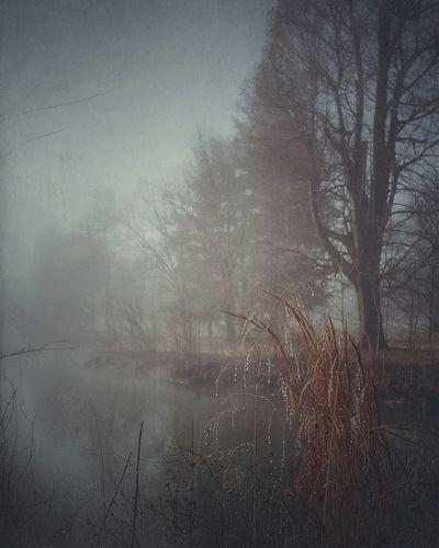 Lake Ethereal
