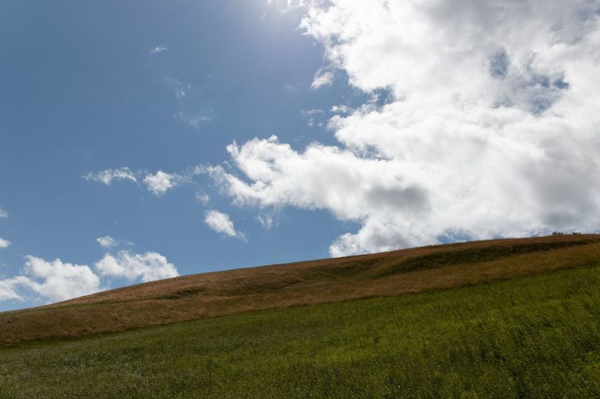 Beauty In Nature Blue Cloud - Sky Day Field Grass Landscape Nature No People Outdoors Scenics Sky Tranquil Scene Tree