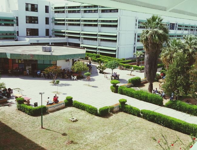 Syria  Latakia  University
