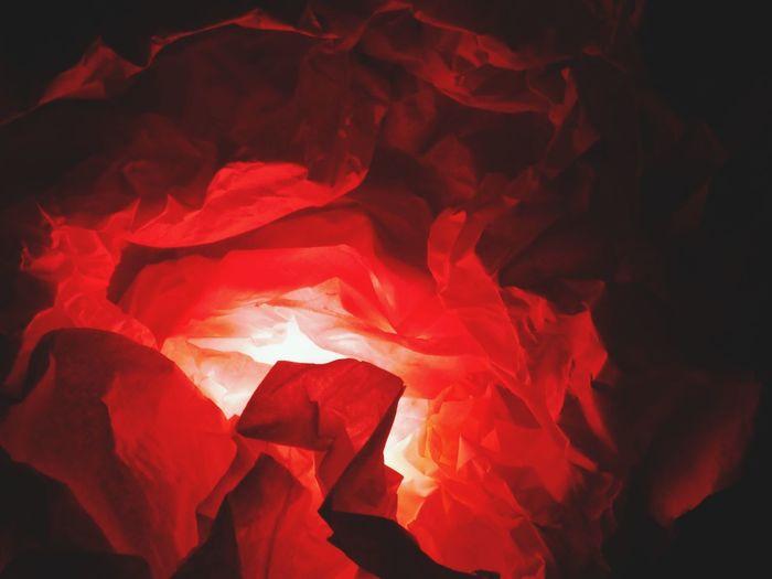 Luminosity Red