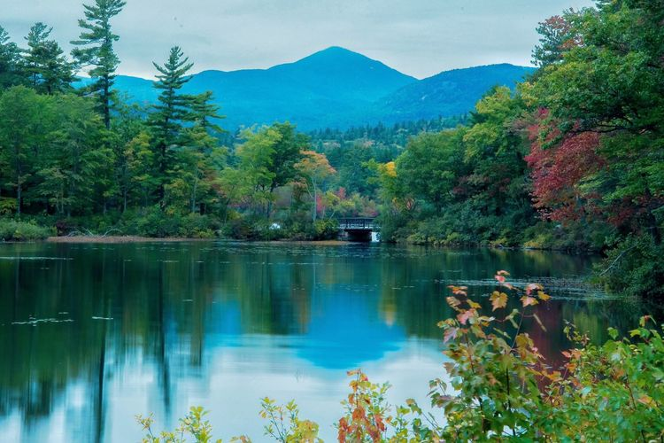 Mount Chocorua. Mountain Lake Beauty In Nature Water Reflection New Hampshire Travel Destinations Travel Landscape Landscape_Collection Mountain Range Countryside Nature Nature_collection Mountains Autumn White Mountains EyeEm Nature Lover EyeEm Best Shots People And Places Foliage Dusk Outdoors Fall Beauty Waterfront