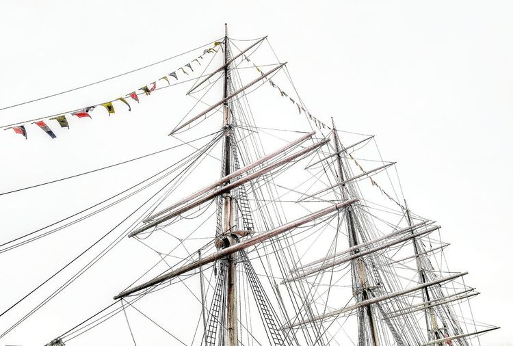 Tall Ship Details Low Angle View Nature Sky Plant No People Environment Beauty In Nature Tree Outdoors Day Leaf Vertebrate Plant Part Flock Of Birds Animals In The Wild Branch Cable Land Cloud - Sky Animal Themes