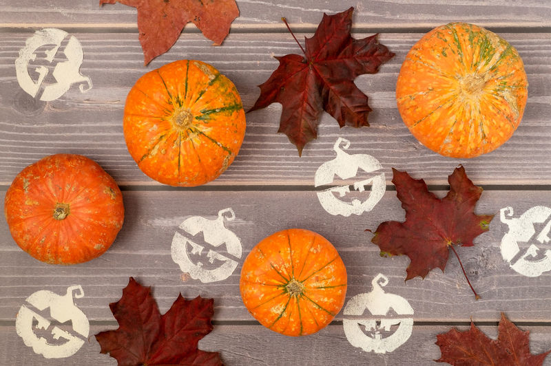 High angle view of orange pumpkins on autumn leaves