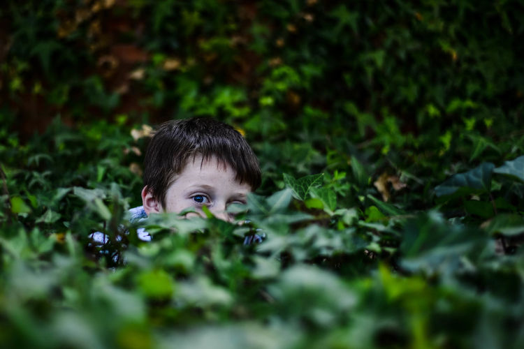 Portrait of boy amidst plants