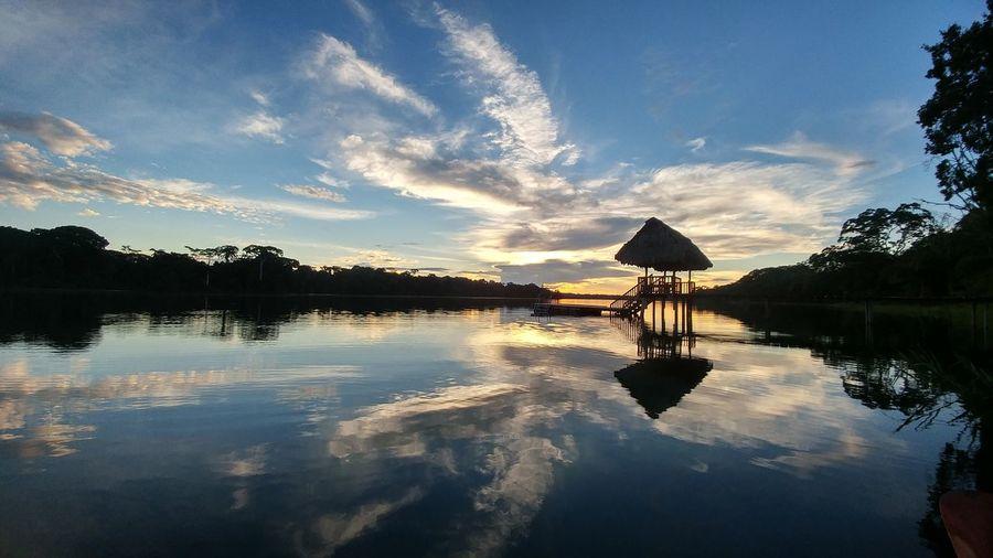 sunset Emiliano Perani Emilianoperani Bolivia BOLIVIA ❤ Amazon Amazonas Amazzonia Amazonia Amazonian Lake Amazonian Forest Tumichucua Beni RIO BENI Tumichucua Lake Lagoon Tropical Tree Coconut Palm Tree