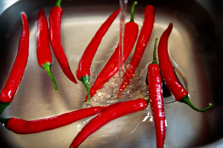 Red Pepper Chili Pepper Red Chili Pepper Food And Drink Vegetable Food Spice Close-up Freshness Indoors  Still Life Chili  No People Ingredient Wellbeing Healthy Eating Large Group Of Objects High Angle View Water Cleaning Hot Kitchen Kitchen Sink