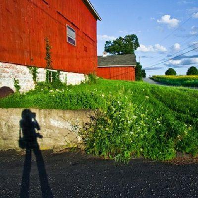 Spring Selfportrait Shadow Instagram Instacolor Meandmyshadow Barns Backroads Instagood Picoftheday Dailydose Ilovetotakephotos