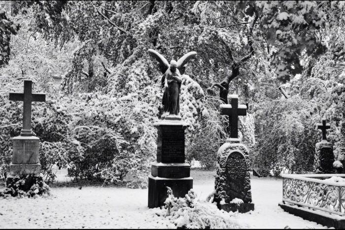 Creative Light And Shadow Cemetery Snow Graveyard Graveyard Beauty Munich Maxvorstadt Silence