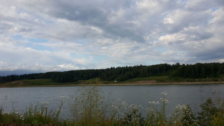 плотина Landscapes Nature No People Grey Sky Water_collection Wildlife & Nature Wildflowers Pond
