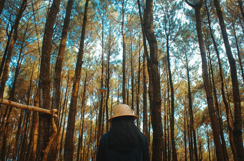 Low angle view of woman standing in forest