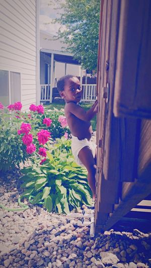 Climb summer loving Kids Being Kids Kidsphotography Cutekids Cutebabies Taking Photos