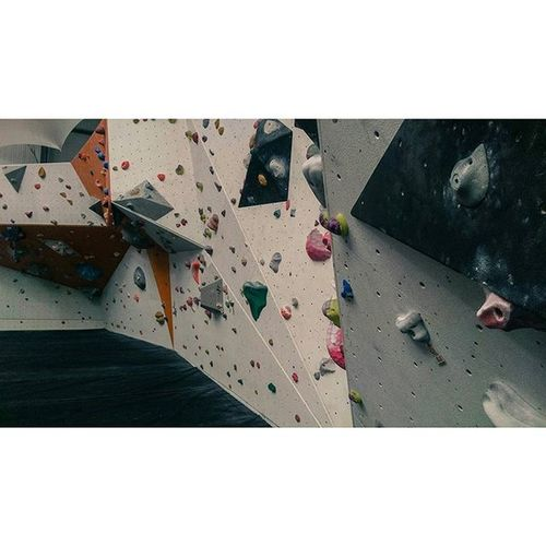 So determined with climbing at the moment 🐨 Climbing BoardRoom Bouldering