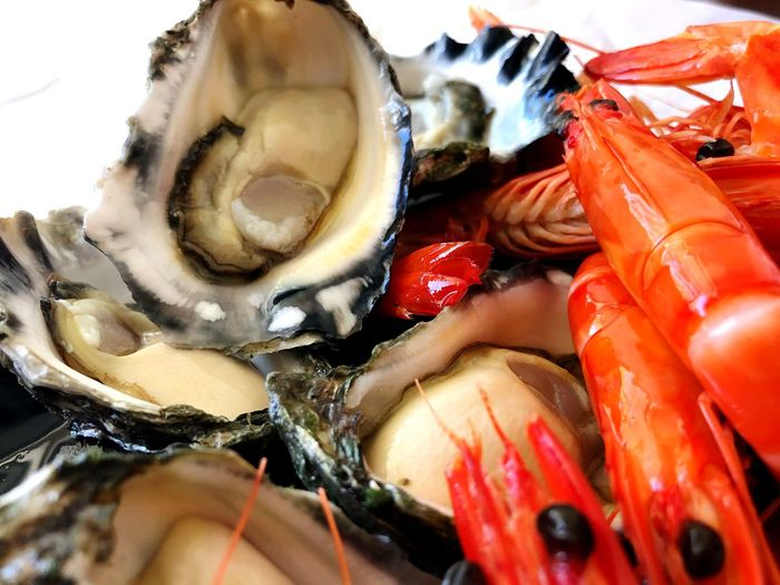 Close-up of shrimps and oysters