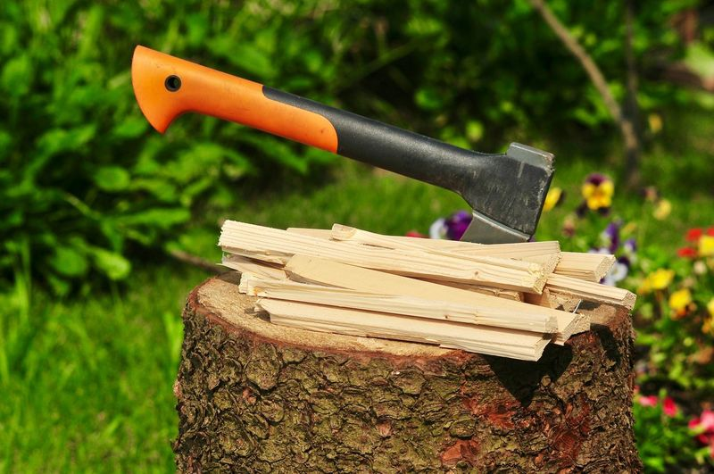 Firewood by axe stuck on tree stump in back yard