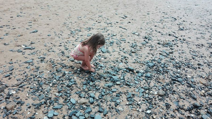 High Angle View Of Girl Picking Up Stone At Sandy Beach