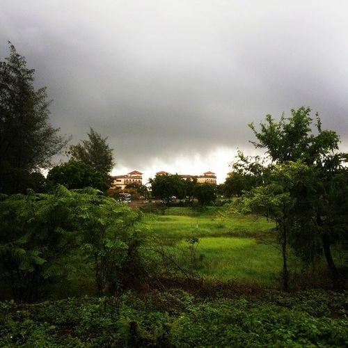 Rain_college_amjing
