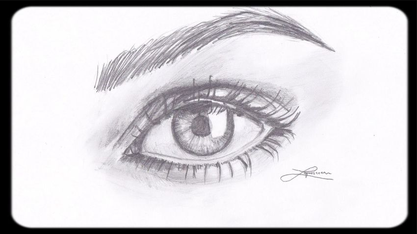 Sketch Drawing Eyes Art