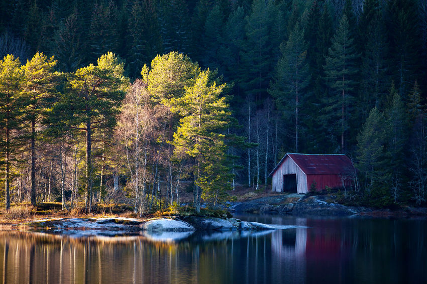 A place Beauty In Nature Forest Lake Nature Norway Outdoors Reflection Telemark Tranquility Tree Water Waterfront Canon 5D Mark II 300mm Full Frame The Great Outdoors With Adobe The Great Outdoors - 2016 EyeEm Awards