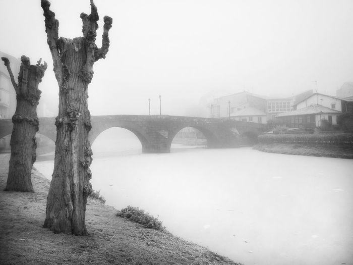 Medieval Bridge. Tree History Cold Temperature