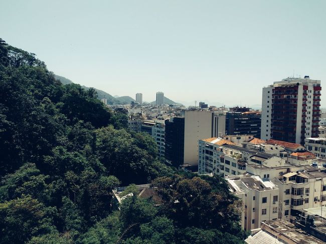 City Architecture Building Exterior Cityscape Tree Sky Built Structure No People Outdoors Skyscraper Day Megalopolis Contrast Tropical Urban High Angle View Residential  Brazilian Urban Skyline Mountain Forest Vintage Retro Vegetation City Life