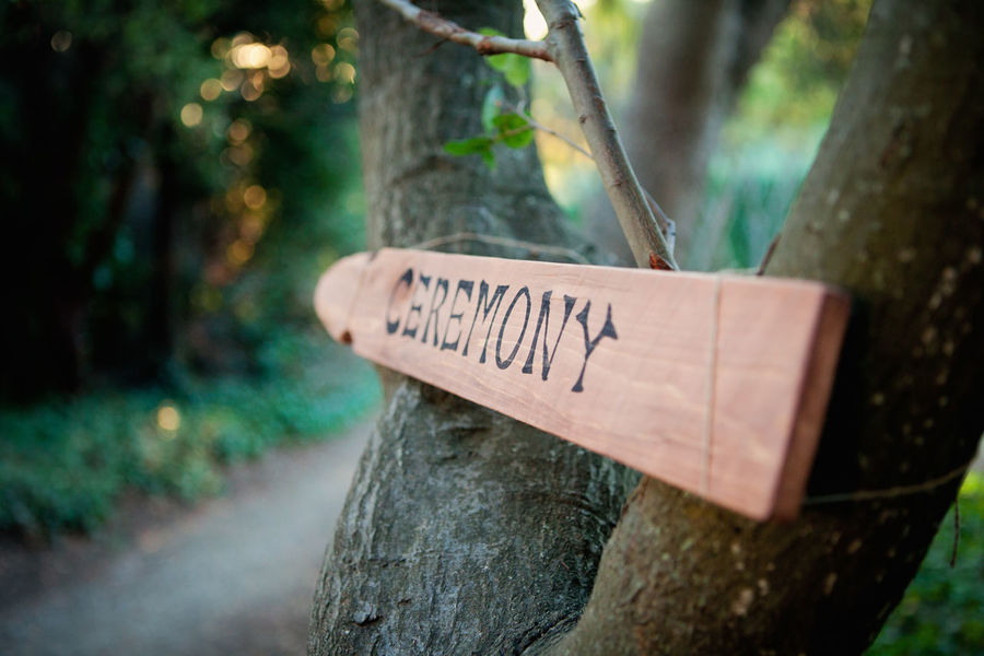 Autumn Collection Autunm Celebration Ceremony Close-up Communication Day DIY Diy Wedding Fall Fall Collection Fall Leaves Focus On Foreground Leaves No People Sign Sign Board Text Tree Tree Trunk Trees Wedding Western Script