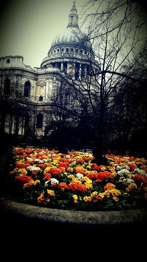 St.Pauls Church London