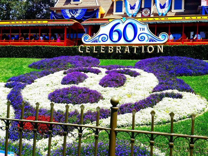 60th Anniversary celebration at Disneyland, CA, USA Disneyland Mickey Mouse Landscape Theme Park Flowers