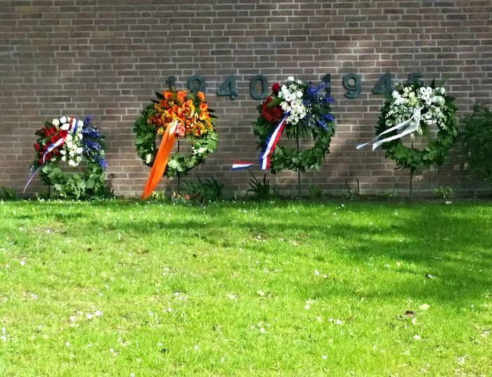 Freedom,windy, Holland, Remember,bevrijdingsdag Bevrijdingsdag  ,wo2,