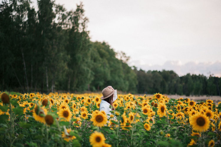 Woman standing in sunflower field against sky