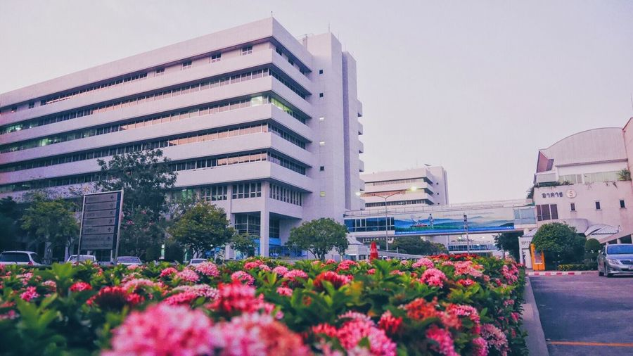 """Firts Eyeem Photo Landscape Photooftheday Photography Beauty In Nature Bangkok Thailand. Myoffice Office Building Seeing The Sights Picture Pictureoftheday .... By : Memay """"S.R."""" Panasonic  Luminosity Lumixgf7 📷 First Eyeem Photo"""