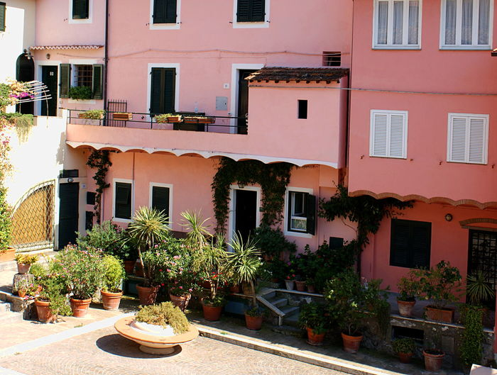 Courtyard with pots of plants of an Italian building in rosy coral tones in the summer sun. Building Exterior Coral Colored Courtyard  Italy Outdoors Pastel Colors Plants Rosy Seaside Town Sunlight And Shadow Sunny Travel Vines On Wall Windows