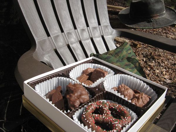 Adirondack Chairs Chair Chocolate Food Forrest Lounge Nature Peace Relax Relaxing Wilderness Food Photography Delicious