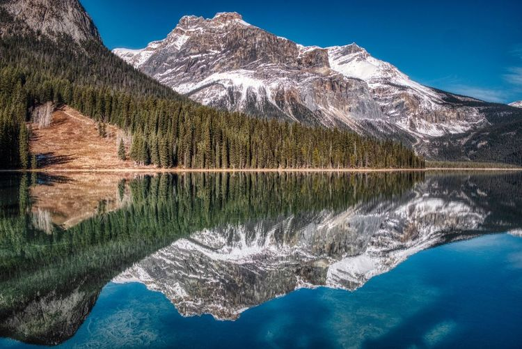 Perfect reflections Emerald Lake Mirror Reflection Reflection Water Mountain Scenics - Nature Lake Beauty In Nature Reflection Tree Mountain Range Tranquility Tranquil Scene Nature Environment Snow Plant Cold Temperature No People Sky Land Mountain Peak Outdoors 17.62° My Best Photo My Best Photo 17.62° The Great Outdoors - 2019 EyeEm Awards My Best Photo