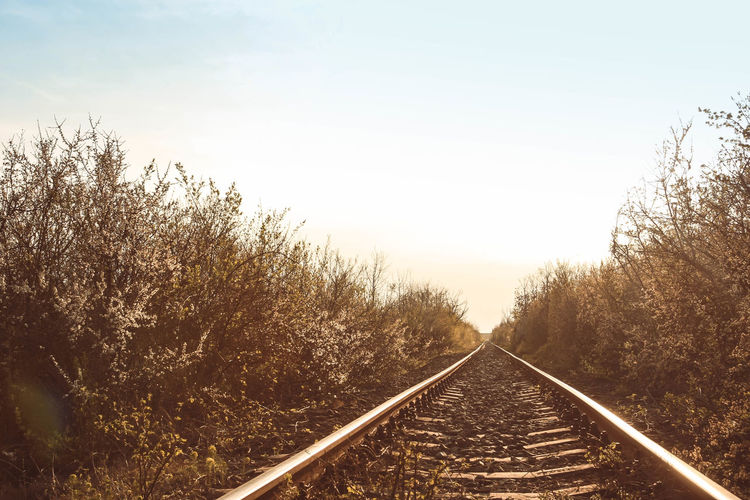 Beauty In Nature Clear Sky Day Growth Landscape Nature No People Outdoors Rail Transportation Railroad Track Railway Track Scenics Sky Straight The Way Forward Track Tranquil Scene Transportation Tree