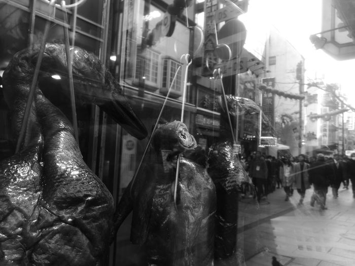 duck over the mirror Smoked Dish Chinese Food Chinese New Year Chinatown Chinatown Yokohama Beijing Duck Smoked Reflection Store Window Night Store Window City Retail  Architecture Building Exterior Christmas