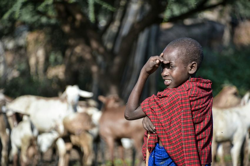 Maasai Boy - Esilalei Village, Tanzania, Africa Maasai Tanzania Africa Portrait People Travel Travel Photography The Week On EyeEm