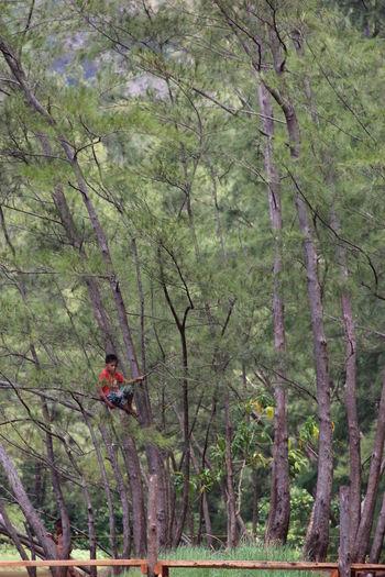 Trees Child Nature Climbing Trees Anawangin Zambales Southeast Asia Philippines No Filter No Edit Natural Original