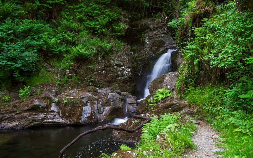 Glen Helen Beauty In Nature Blurred Motion Environment Falling Water Flowing Flowing Water Forest Green Color Isle Of Man Land Long Exposure Motion Nature No People Outdoors Plant Power In Nature Rock Rock - Object Scenics - Nature Solid Tree Water Waterfall