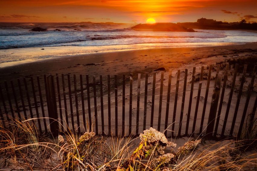 Land Beach Water Sea Sunset Beauty In Nature Sky Horizon Over Water Sunlight Outdoors Horizon Tranquil Scene No People Bay Sand Plant Tranquility Sun Nature Scenics - Nature