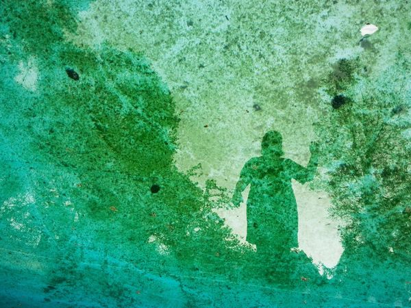 Reflection Swimming Pool Abstract Textured  Green Color Outdoors Nature