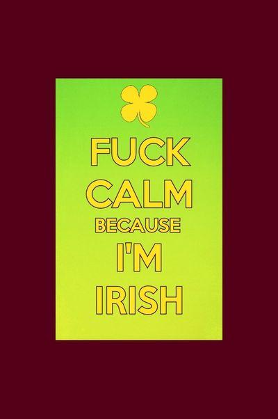 This is pretty much my life well ...... Im irish ! Luck Of The Irish Kiss Me Im IRISH