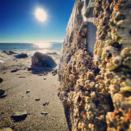 Rocks on beach against sky on sunny day