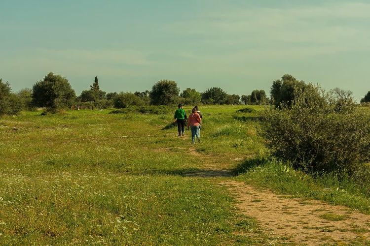 Rear view of people walking on land