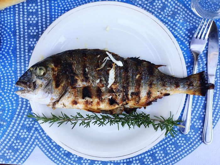 Grilled fish on