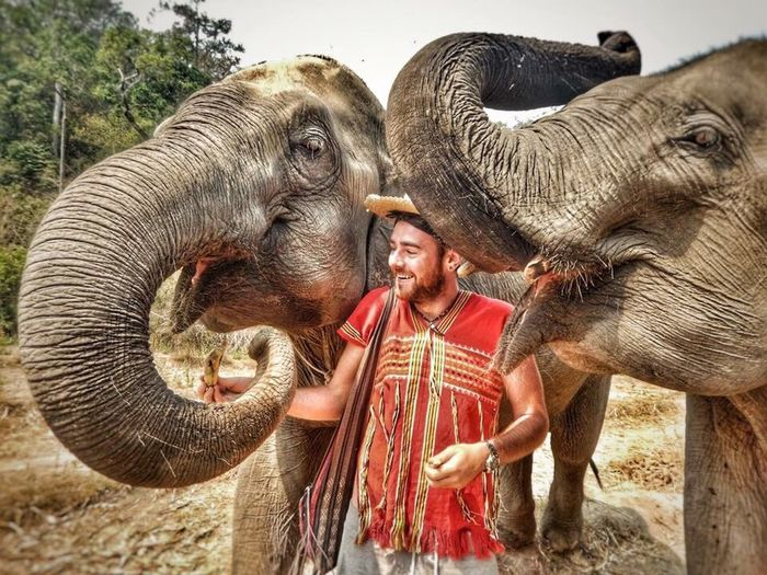 Travel fun 🌎 Bonding Mammal Lifestyles Elephant Elephants Animals Animal_collection Elephant Trekking Thailand Thailand_allshots Wildlife Wildlife & Nature Feeding Animals Animal Love Happy Happy People Traveling Adventure Exploring Travel Photography Travel Traveler Vacations Laughing Experience