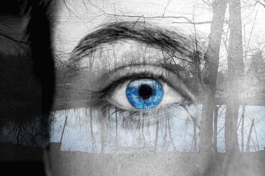 Live For The Story Human Eye Human Body Part Eyelash Iris - Eye Eyesight Eyeball Eye Blue Eyes Sensory Perception Close-up Looking At Camera People Day Landscape Tranquility Branch Outdoors Indoors