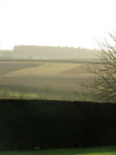 Ploughed fields