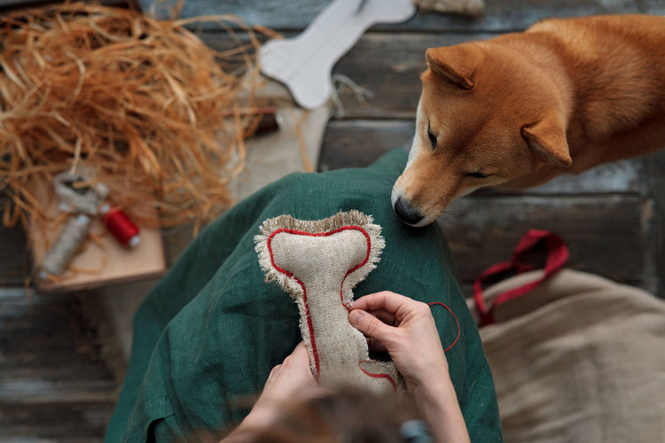 Midsection of woman making diy dog  toy from textile and eco filler